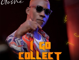 Goshe I Go Collect Prod. Fizzy Beat Artwork
