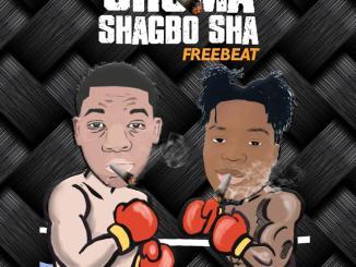 DJ Teekay ft. Slimfit – Shoma Shagbo Sha Instrumental