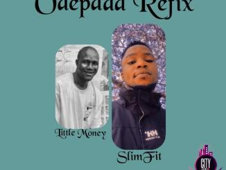 DJ SlimFit ft. Little Money Idi Oro — Odepada Refix