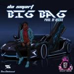 Dasmart — Big Bag (Prod. Rexxie)