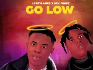 Larrylanes x Seyi Vibez — Go Low