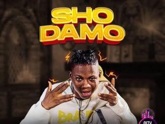 Oluwacoded — Sho Damo