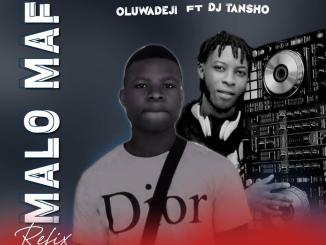 Oluwadeji ft. DJ Tansho — Malo Mafor Refix