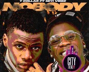 T Dollar ft. Seyi Vibez — Nobody