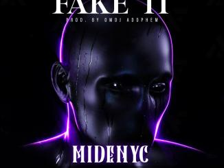 Midenyc — Fake It