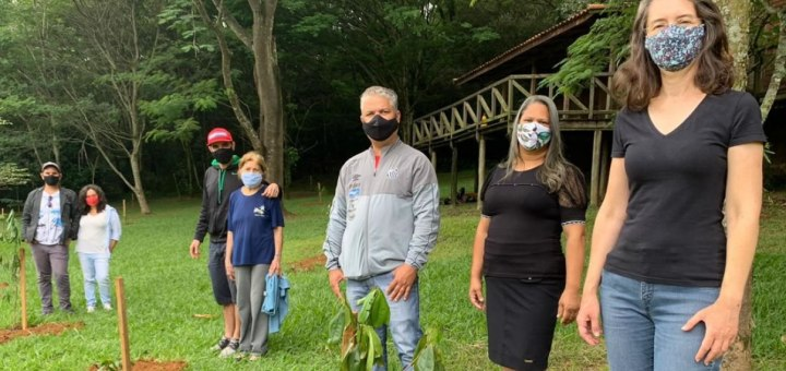 Plantaran 200 mil árboles en brasil en memoria de victimas del Coronavirus