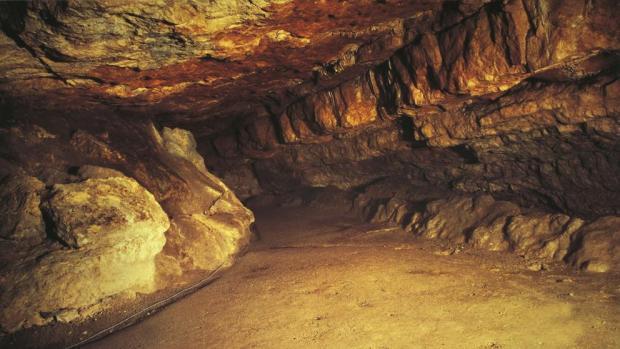 Foto de la Cueva de Altamira