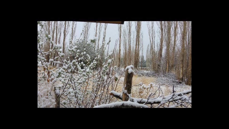 Nieve en Barreal San Juan