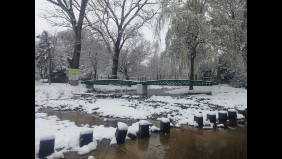 Nieve en San Luis en la Carolina