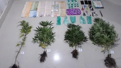 Photo of La Policía secuestró más de 1.600 dosis de cocaína en norte provincial