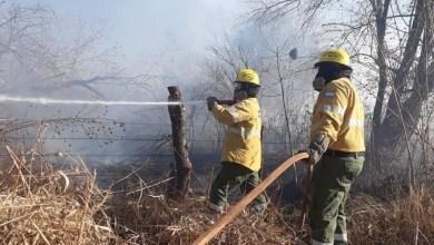 Photo of Alerta máxima por incendios forestales