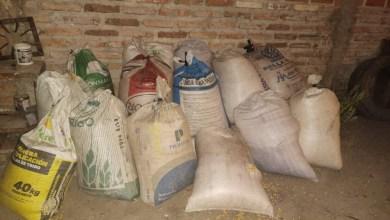 Photo of Dos detenidos por el robo de casi una tonelada de maiz