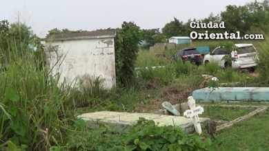 "Photo of ""Turismo de tumbas"" muestra incapacidad PLD administrar cementerio"