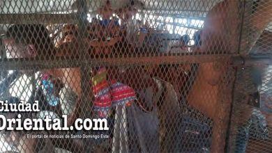 Photo of Al menos 40 presos metidos durante horas en una guagua a pleno sol en la Fiscalía de SDE