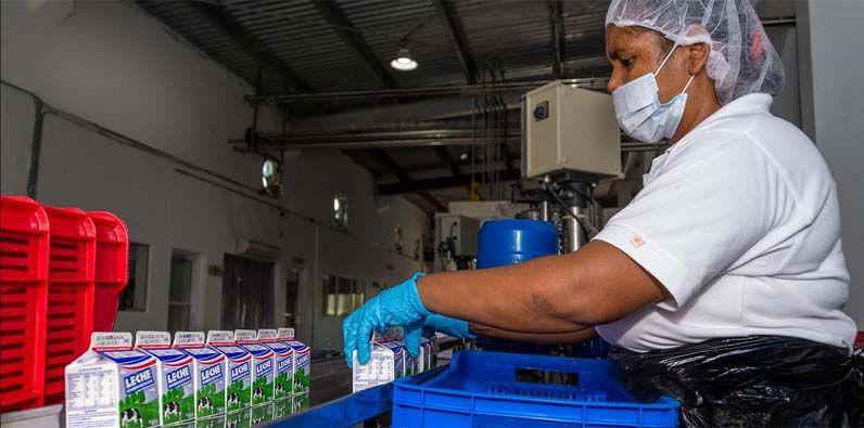Con la iniciativa, se brinda apoyo a los productores nacionales de leche.