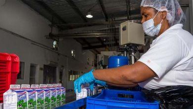 Photo of INABIE ha comprado más 360 millones litros de leche a ganaderos nacionales