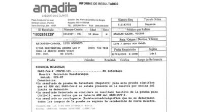 Photo of Médicos declaran recuperados a Luis Abinader y Raquel Arbaje, tras dar negativo segunda prueba
