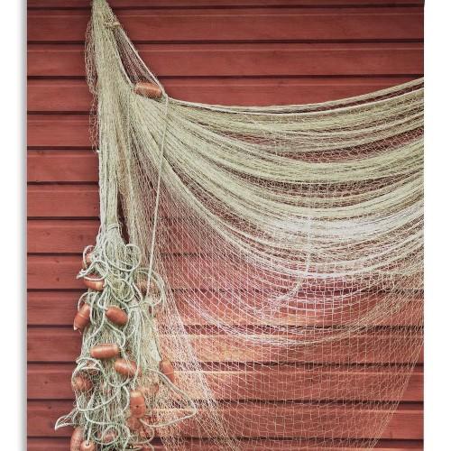 Netwerk visserij