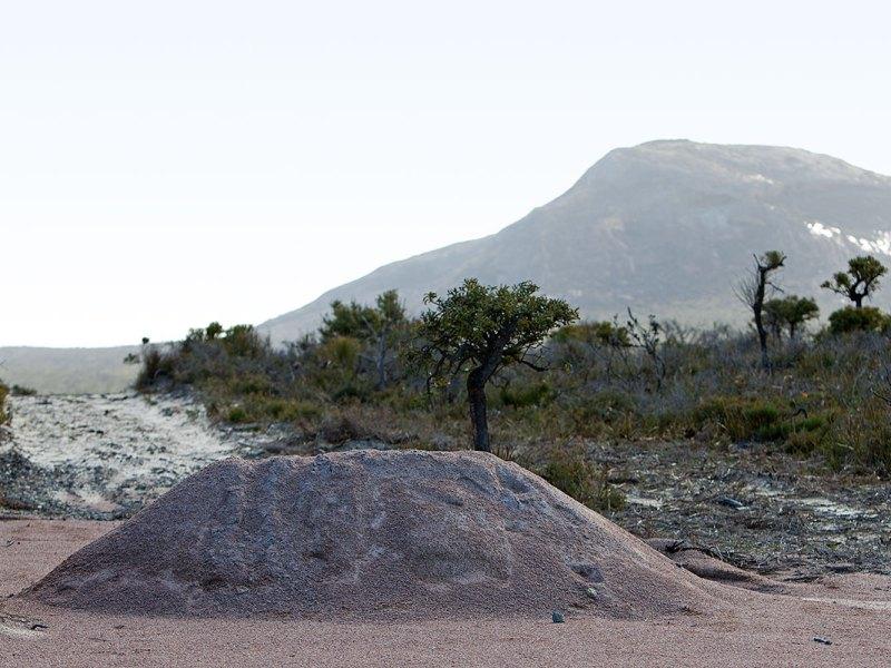 Cape Le Grande
