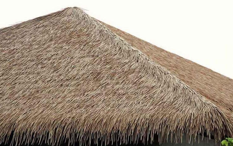 Thatch - Types of Building Materials used in Building Construction