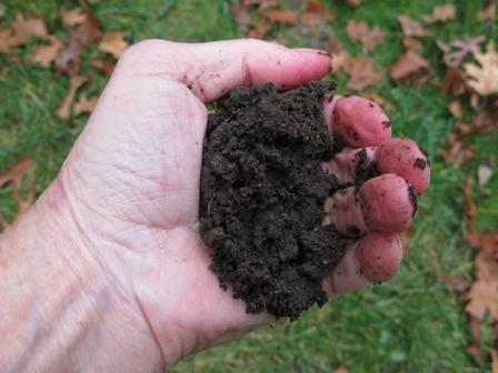 Effect of Moisture on Soil