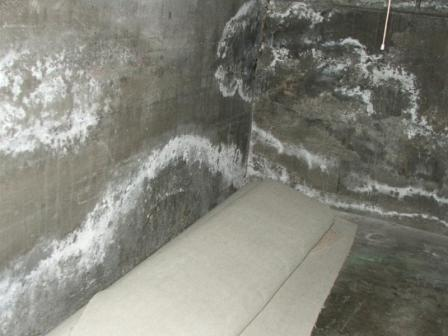Efflorescence on plaster