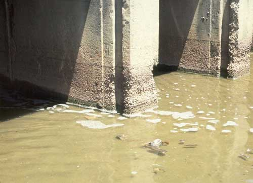 how to potect concrete from sulphate attack