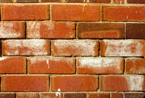 Efflorescence of Brick- Defects found on bricks