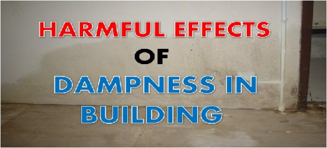 harmful effects of dampness in building