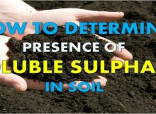 how to determine presence of soluble sodium sulphate in soil