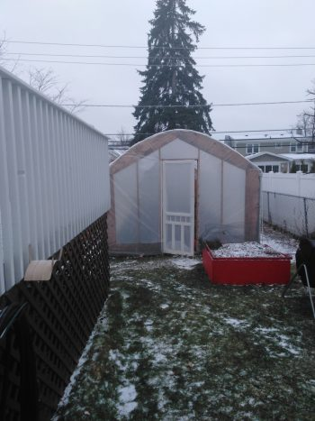 The Virgil's hoop house in winter.