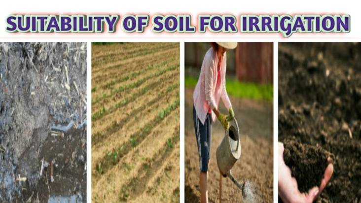 Suitability of soil for Irrigation