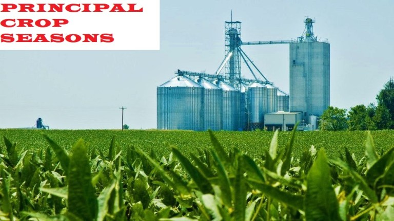 Read more about the article Principal Crop Seasons