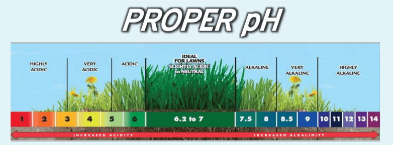 PROPER pH VALUE