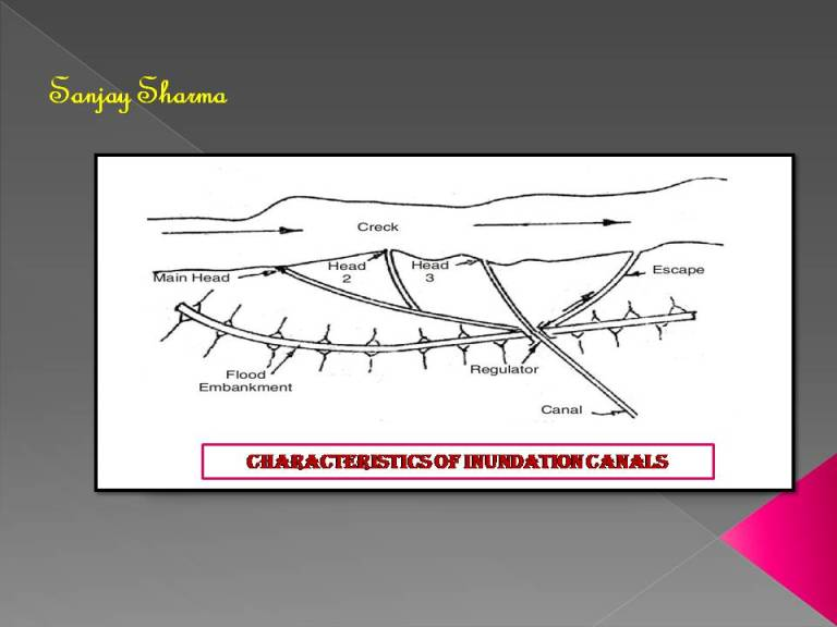 Read more about the article Characteristics of inundation canals