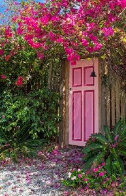 Wooden Front door design