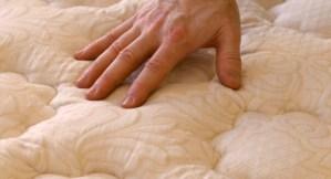Feel the sofa padding
