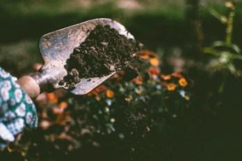 3 Types of Soil Samples - Undisturbed, Disturbed and Non representative Soil Sample