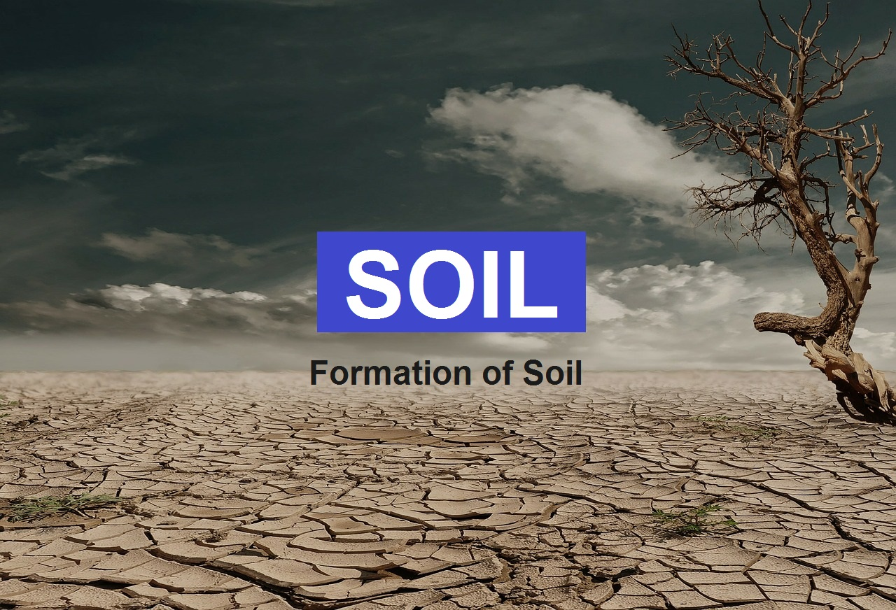 What is SOIL? Definition & Formation of SOIL