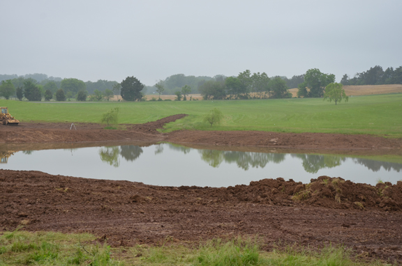 Newly expanded pond with much over-turned earth