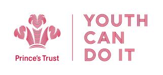Image result for princes trust scotland youth can do it