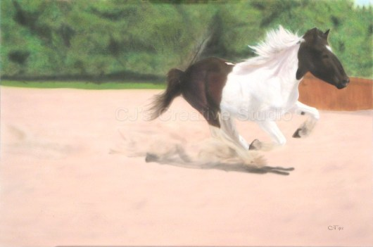 Kenai Running I
