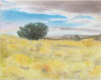 Desert Morning Landscape