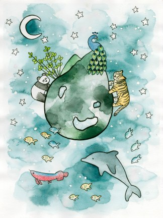 Watercolor art children illustration china asia dolphin tiger peacock panda arowana dragon fish bamboo night moon stars mountains