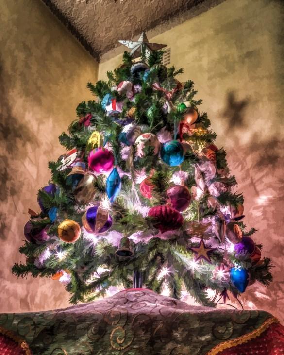 O Christmas Tree 2012