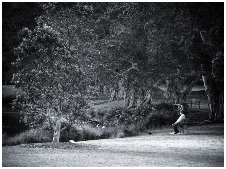Man By the Lake