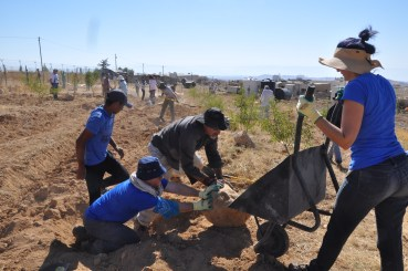 Clearing Boulders in Umm Al-Khair