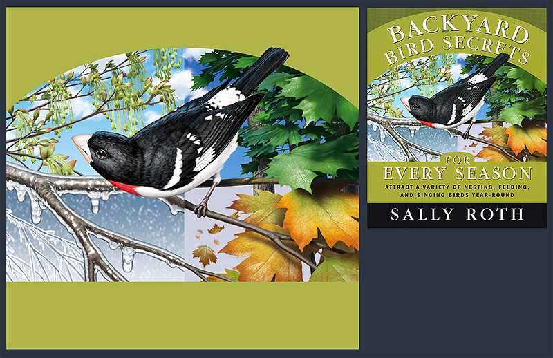 Illustration of a ruby breasted Grosbeak, plus scan of book cover on which it was used.