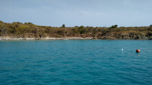The reef. Just below the surface are corals, fish, turtles, stingrays, and beauty.  Above are frigate birds and gulls nesting grounds as well as iguanas and such.