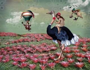Playtime in Wonderland